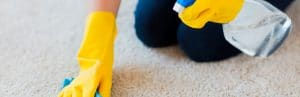 Person cleaning a carpet, CERTIFIED CLEANING PROFESSIONALS